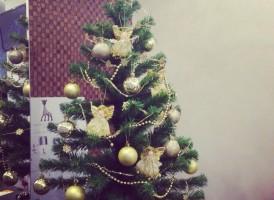 """Новый год в студии красоты """"Иль де Жюли"""""""