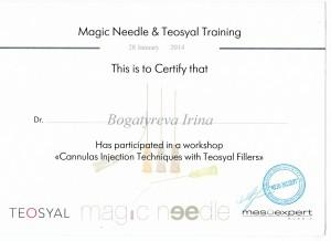Сертификат15 - копия