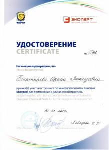 Сертификат6 - копия