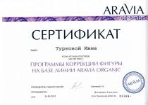 Сертификаты Инны0002
