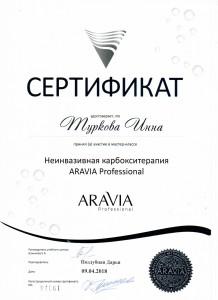 Сертификаты Инны0003