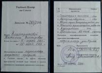 Диплом Натальи Елистратовой