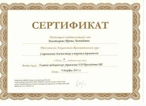 Сертификат13 - копия