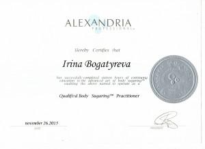 Сертификат21 - копия